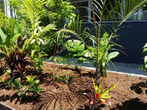 Cairns Garden Art Landscapes
