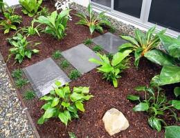 New Home Patio Garden