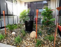 Atrium Garden Landscaping