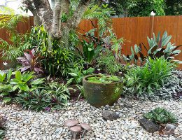 Gardening Services Cairns